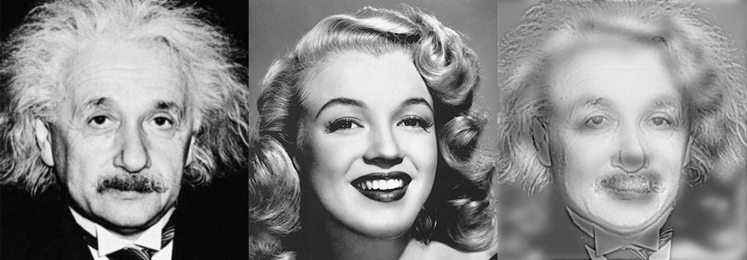 Albert Einstein, Marilyn Monroe, and their hybridization.
